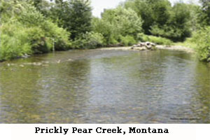 Prickly Pear Creek, Mont.